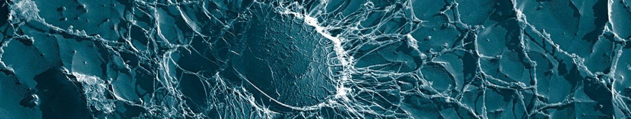 Microbe Matters